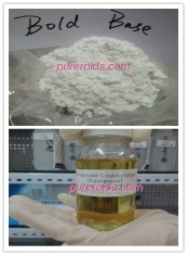 Boldenone Base/EQ