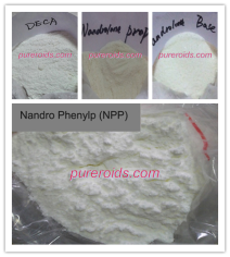 Nandrolone Series